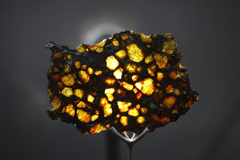 Fragment of a meteorite pinned on stand and backlit to reveal small crystals in structure.