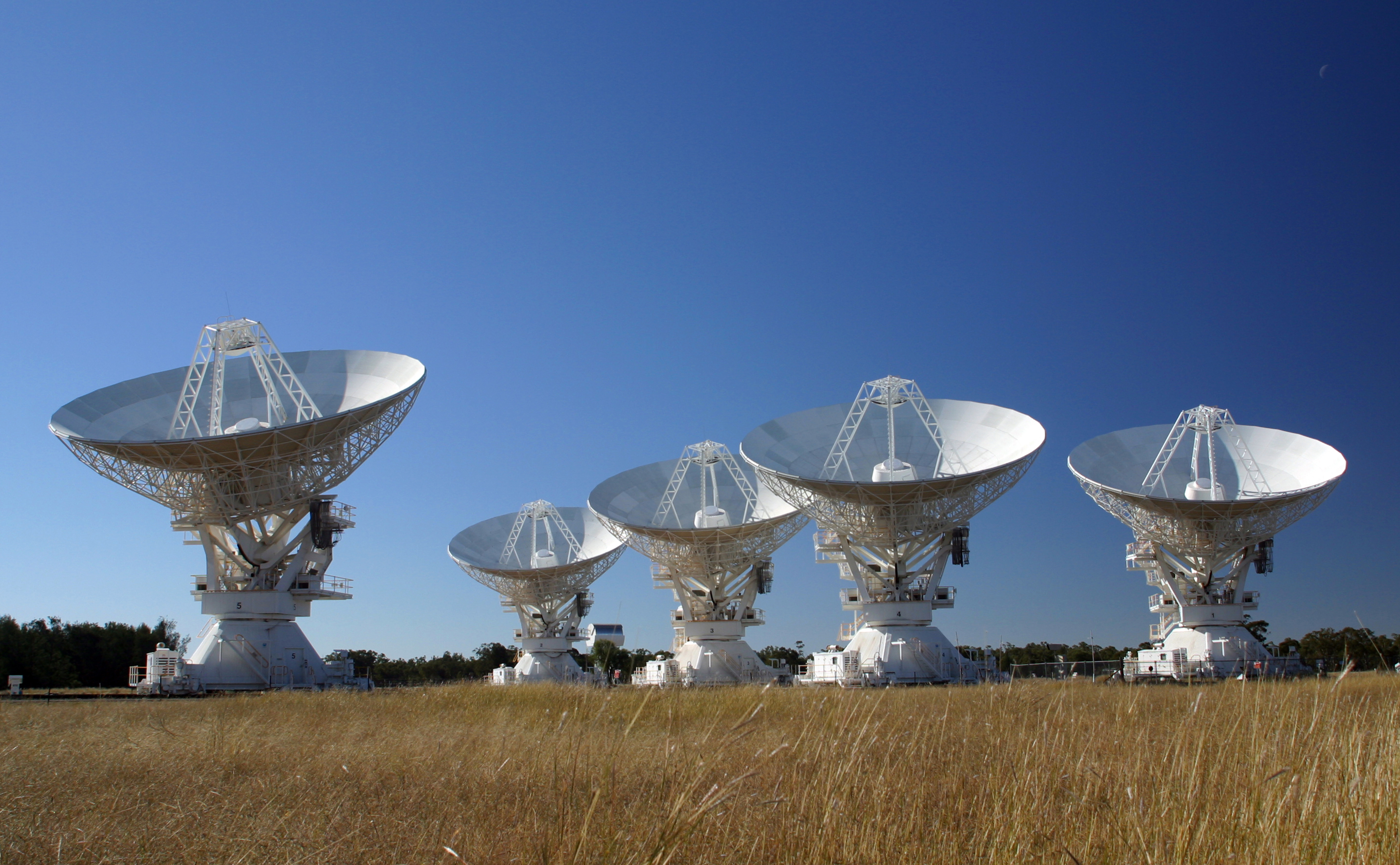 Five radio telescope dishes facing upwards set against a blue sky and wheat field in the foreground.