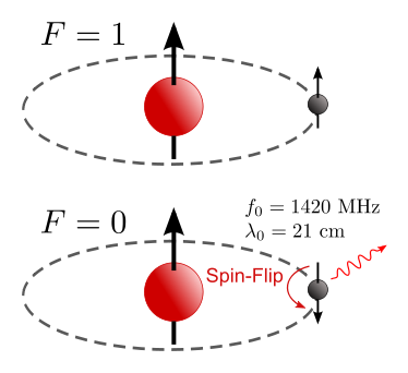 Diagram showing basic hydrogen atom in 2 states. Top diagram is excited and shows both proton and electron with axis in same direction. Bottom diagram shows the electron flipping its axis and facing down. Coming off the electron is a wave labelled 21cm.