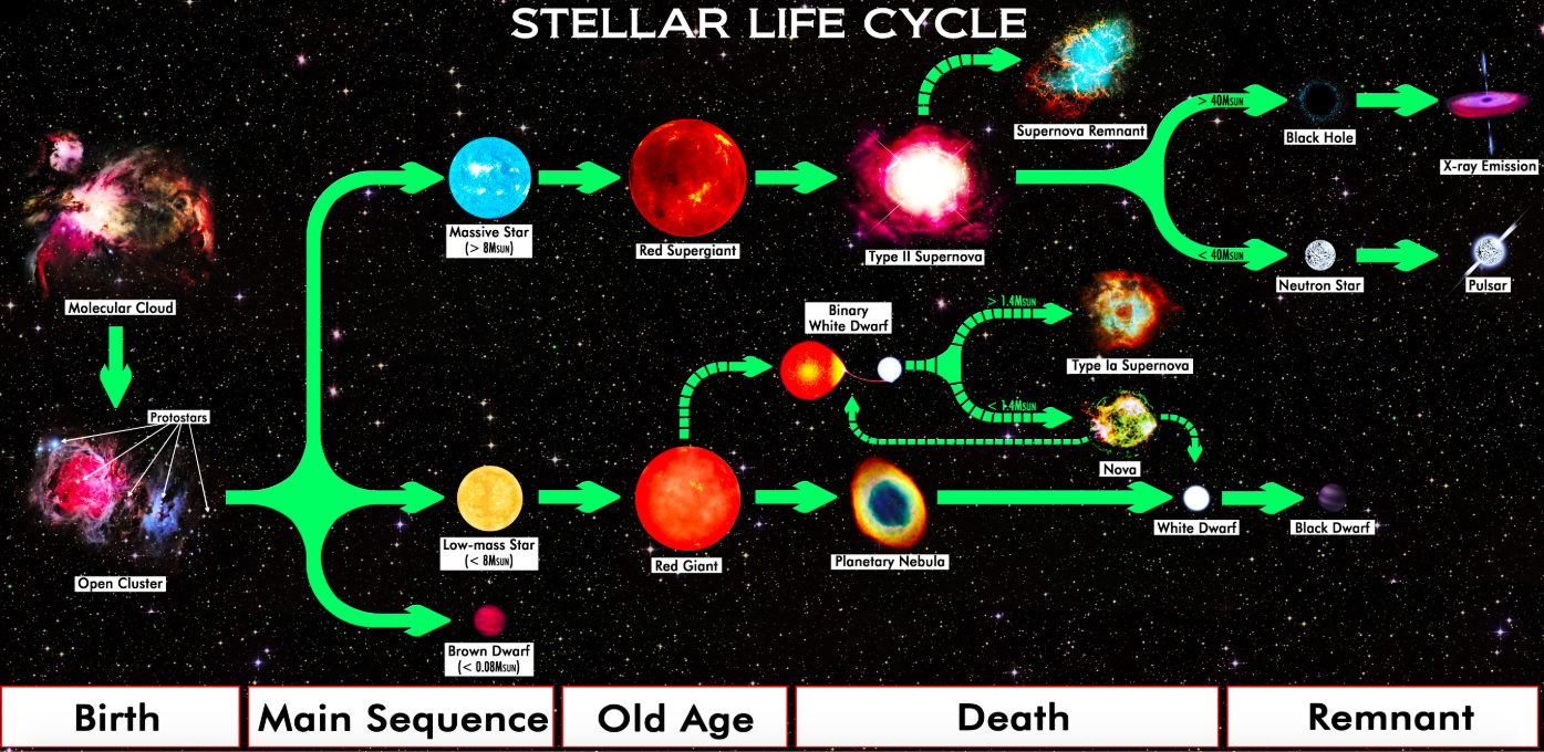 Diagram showing star births on left through to main sequence then a division of their old age and death.