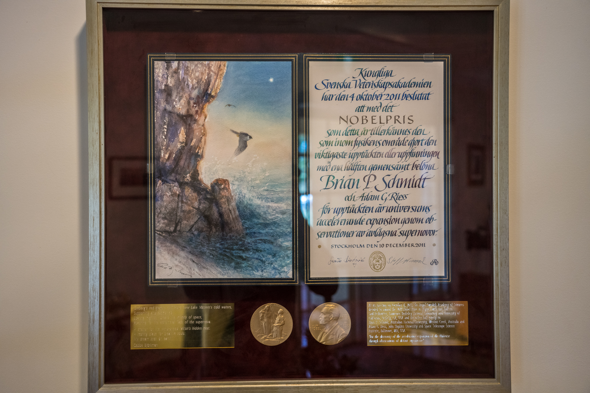 Framed Nobel peace prize award on wall.