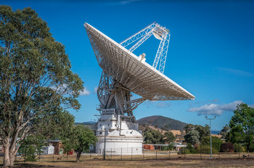 The large dish antenna pointing skywards and surrounded by trees and shrubs. The base of the tower is also visible.