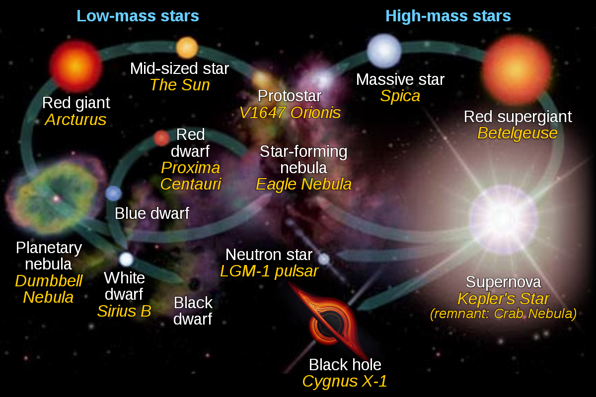 Diagram showing the evolution of low mass stars on left and high mass stars on the right. In the centre is where stars are born then they follow their stellar evolution models based on mass.