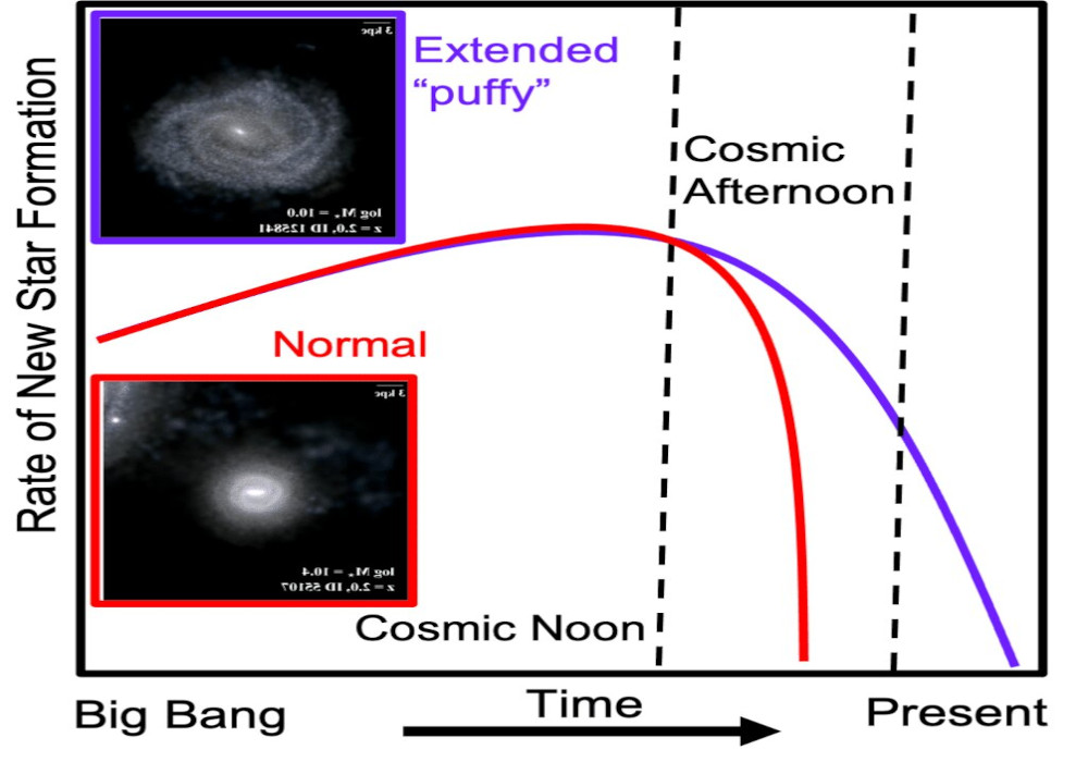 A graph with time from the Big Bang on the x-axis and rate of star formation on the y-axis, showing that star formation rate declined faster for normal galaxies after cosmic noon than it did for puffy galaxies